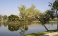santee lakes - santee real estate