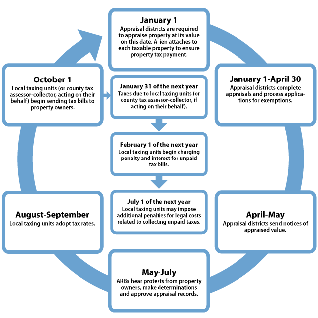 The property tax process for each tax year includes a series of steps.
