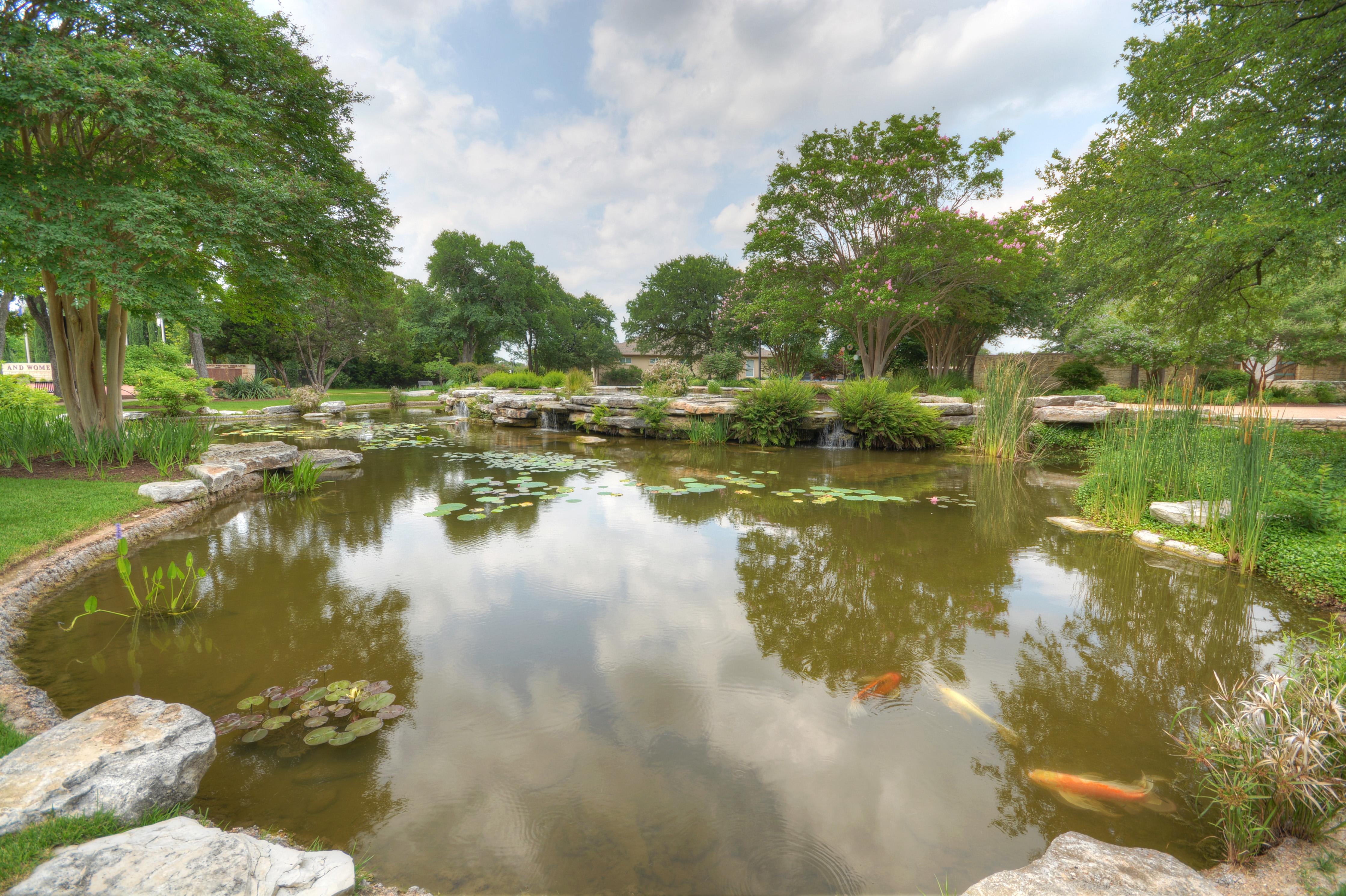 Social Center Koi Pond
