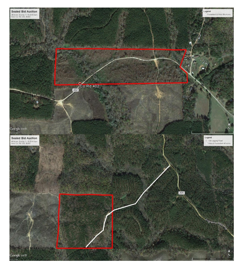Southeastern Realty Auction Company Land Estate Auctions 256