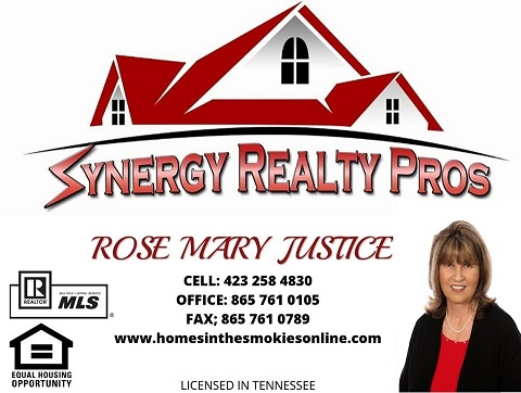 Rose Mary Justice Agent at Synergy Realty Pros