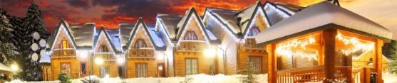 best ski property listing agents