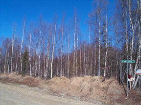 Lots And Land Sold: 39440 S John''s Rd