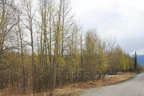 Lots And Land Sold: 1971 S Cotten Dr