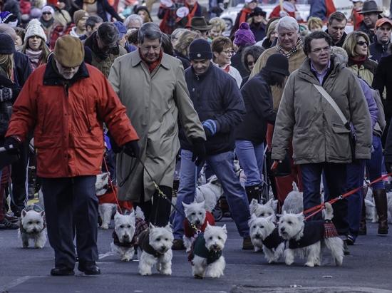 Christmas Walk Alexandria Va 2018 Scottie Dogs Realtor for Alexandria Va