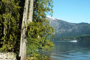 Leavenworth Real Estate Sold Lake Wenatchee Lot
