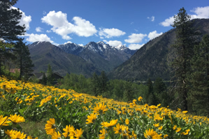Leavenworth Real Estate Sold View Acreage