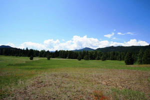 Leavenworth Real Estate Sold Acreage