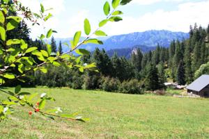 Leavenworth Acreage