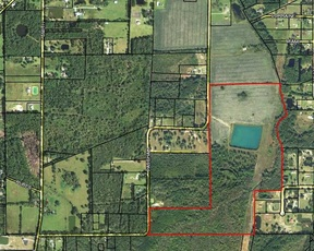 Lots and Land For Sale: Paschall Road