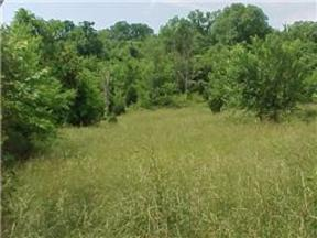 Lots And Land Active: 0 Fort Blount