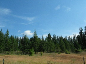 Lots And Land Sold: Twin Lakes Rd