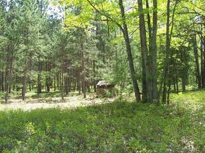 Lots And Land Sold: Healy Hardwoods Road