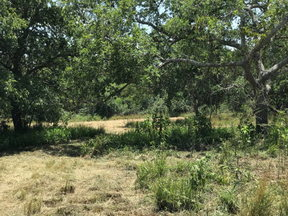 Lots And Land Sold: FM 1726