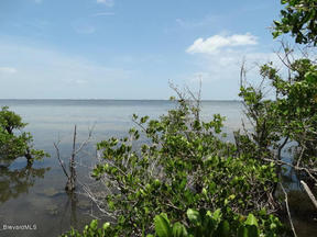 Residential Sold: 7185 S Tropical Trail