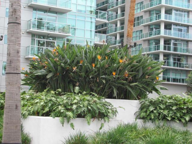 Marina Del Rey Real Estate Blogs