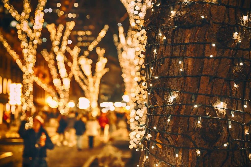 Marina Del Rey Holiday Lights