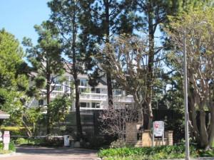 Marina Del Rey Condominium Guide Search