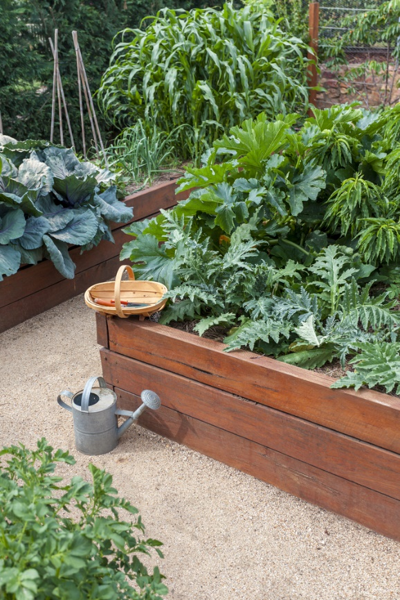5 Reasons to Grow Vegetables in Raised Beds