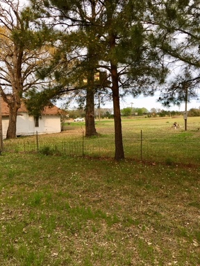 Commercial For Sale: 11799 Texas Hwy