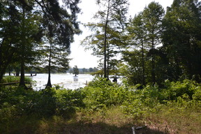 Residential Lots & Land New Listing: Lafayette Rd 5202