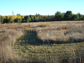 Lots And Land Sold: 47 Snowberry Drive