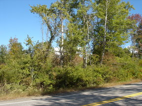 Lots and Land Sold: 00 Huston Road