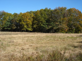 Lots and Land For Sale: Parker Farm Road
