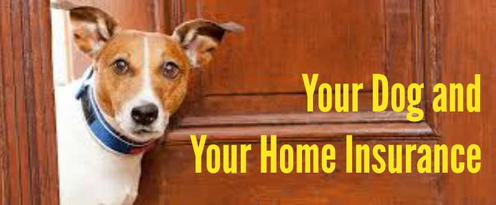 Home insurance and dog liability