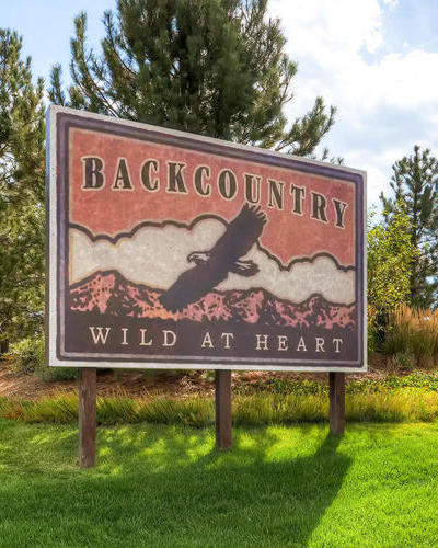Homes for Sale in Backcountry, Highlands Ranch, CO