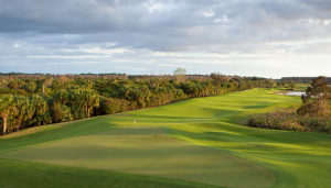 Twin Eagles Golf course in Naples FL