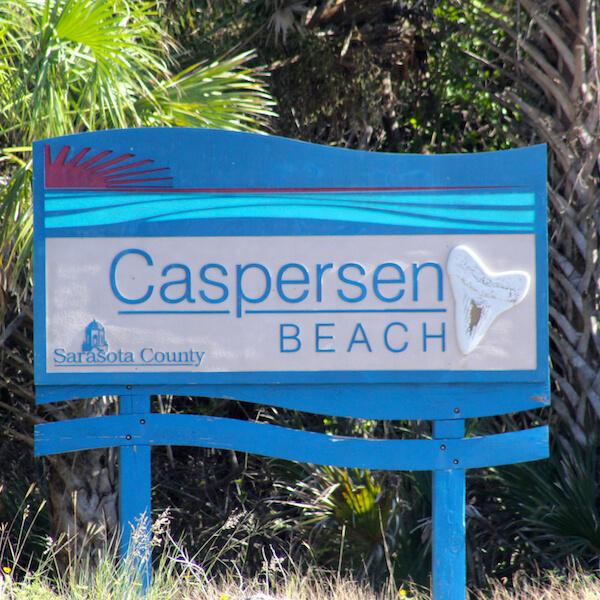 Caspersen Beach Venice FL is famous for finding shark teeth