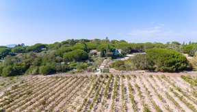 Single Family Home For Sale: Parks of Saint Tropez