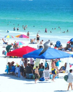 Beautiful Weather and Perfect Water Temperatures Kept The Beaches Full For The Entire Memorial Day Weekend