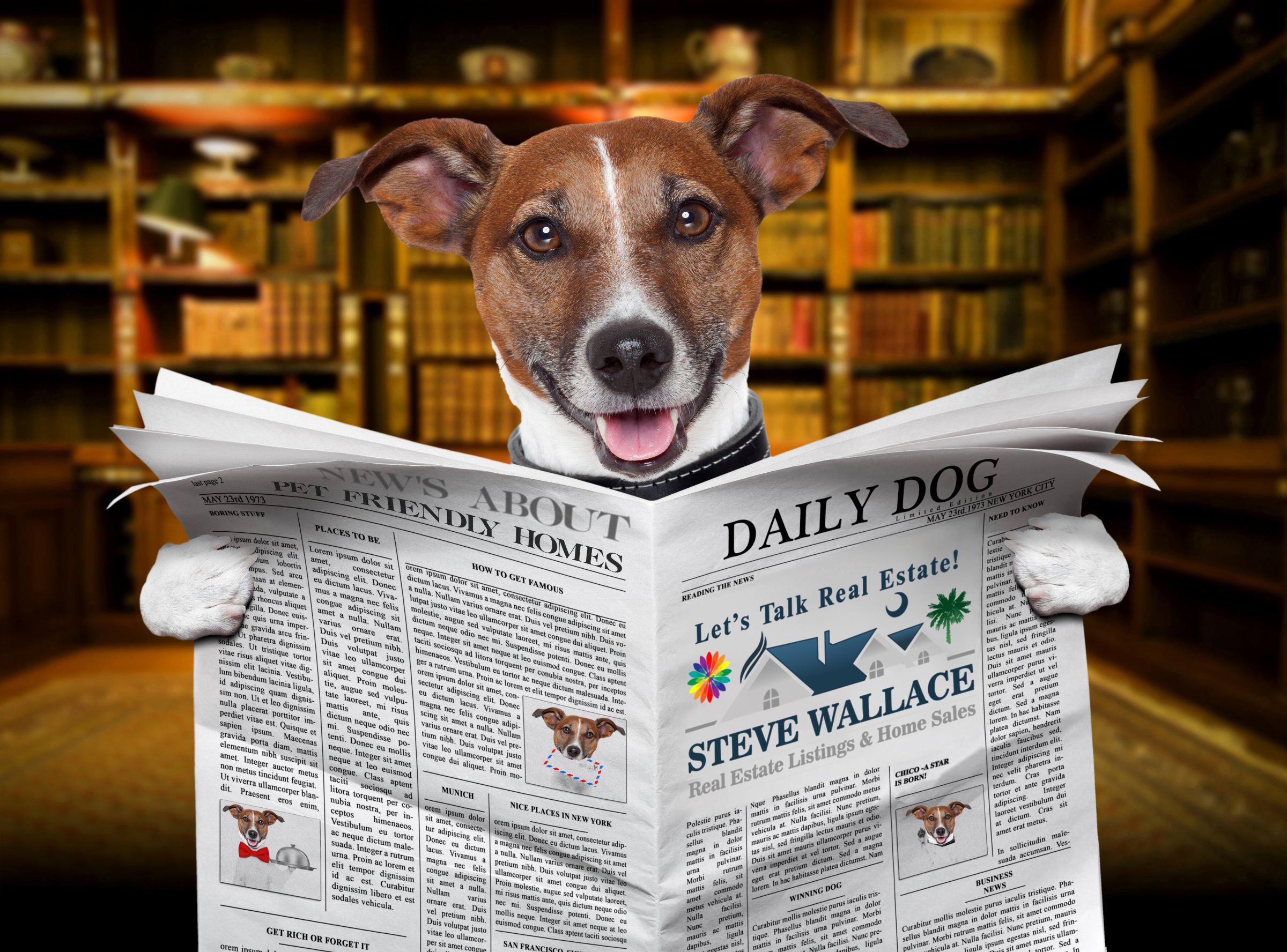 pet-friendly, bluffton, sc, homes, real estate, pet, friendly