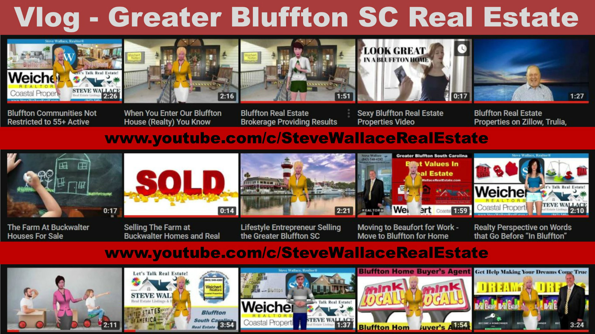 vlog, bluffton sc real estate, video log, blog