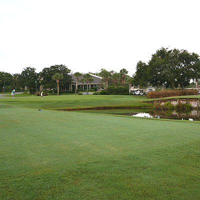 Homes for Sale in Sawgrass, Astor, FL
