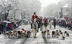 loudoun-county-middleburg-parade