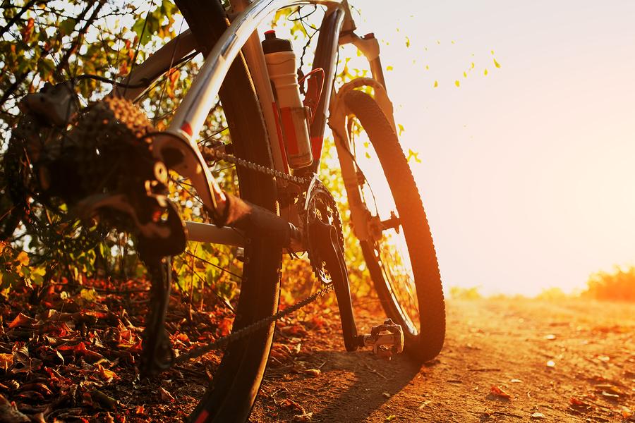 Albuquerque home owners go biking.