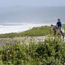horseback-riding-beach.jpg