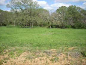 Lots And Land Sold: Lot 18 S. Luther Rd.