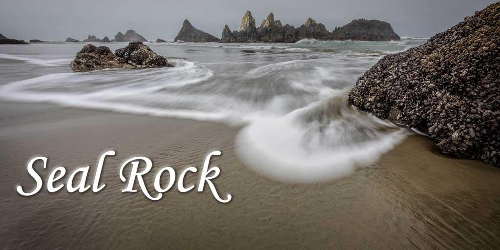 Seal Rock Banner