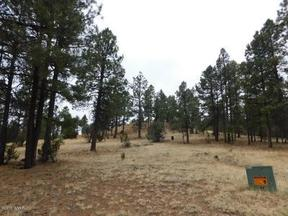 Overgaard AZ Lots And Land Active: $284,000