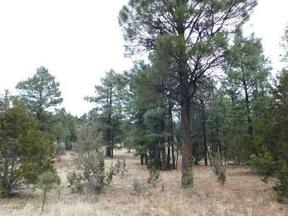 Overgaard AZ Lots And Land Active: $249,000