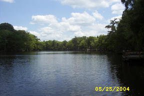 Lots And Land Sold: 45618 Lake Martin Rd