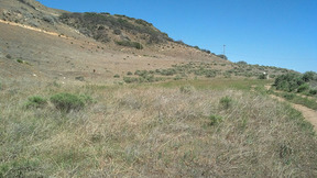 Lots And Land Sold: Tejon Pass Rd.