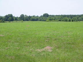 Lots And Land Sold: CR 4260 and 2100