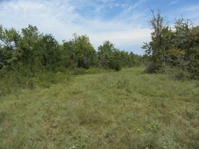 Lots And Land For Sale: E 2080 Rd