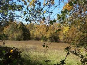 Lots And Land Sold: N 4240 Rd (Beardon Springs Road)