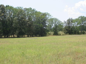 Lots And Land Sold: off Salt Creek Rd